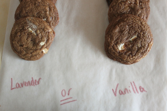 Cookie debate, lavender and white chocolate v. Vanilla bean and white chocolate
